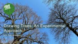 Drawing Trees: An Experimental Approach Workshop Image with title text
