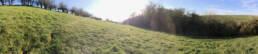 Field view (panoramic photograph)